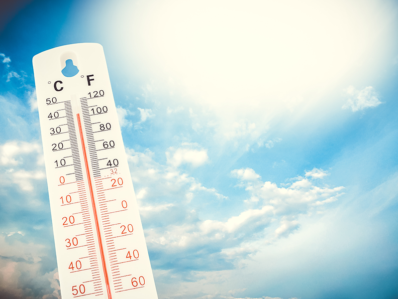 Beat the Heat! Keep Cool at the Library.